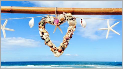 Heart shell decor.